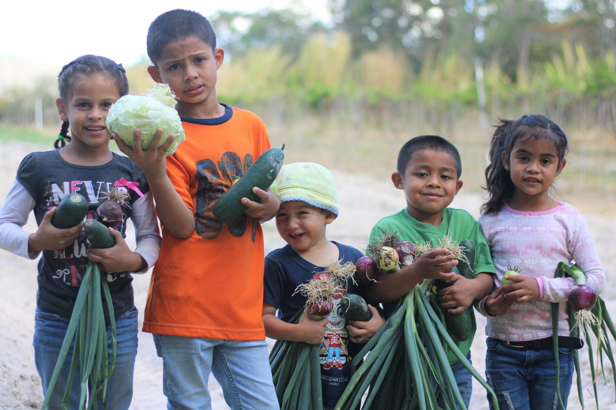 Fünf Kinder halten ihre Ernte vom Tag auf dem Bauernhof hoch.
