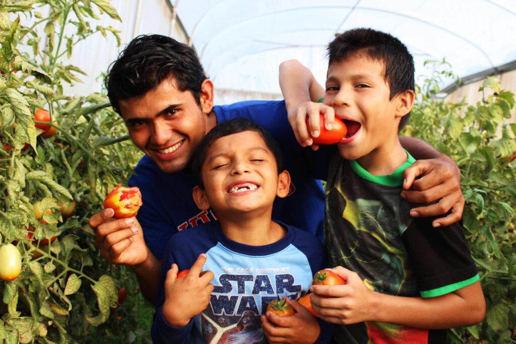 Zwei Kinder essen eine Tomate